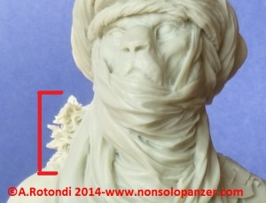 Lion Tuareg 14a