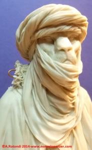 Lion Tuareg 15