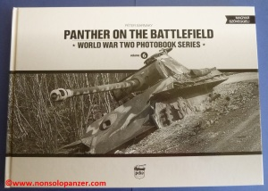 Panther on the Battlefield 01