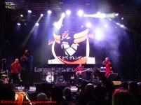 11 Concerti Lucca 2015