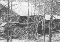 40 Krupp Ardelt 10.5 cm Waffentrager