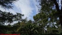 129 Palau de Pedralbes