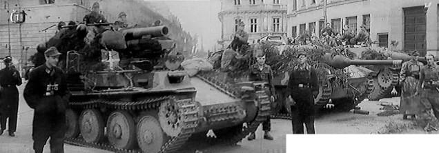 35 Jagdpanzer 38t Starr