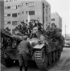37 Jagdpanzer 38t Starr