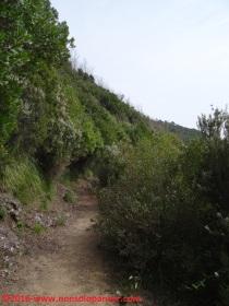 29 Sentieri Portofino