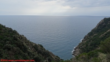 41 Sentieri Portofino