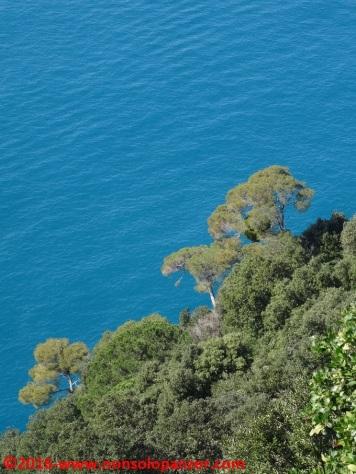 74 Sentieri Portofino