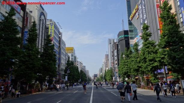 14 Akihabara pedonale