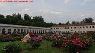 25 Roseto Villa Reale Monza