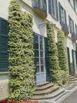 05 Villa Panza