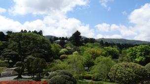 08-onshi-hakone-park