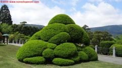 15-onshi-hakone-park