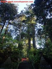 23-hakone-shrine