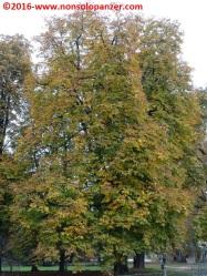 04-autunno-20016-milano