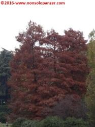 05-autunno-20016-milano