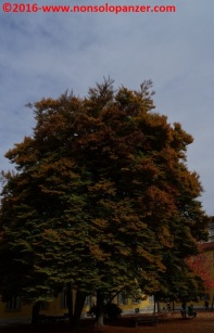 07-autunno-20016-milano