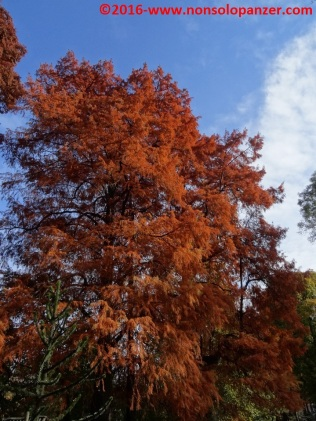 13-autunno-20016-milano