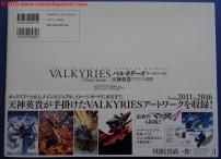 02-valkyries-third-sortie