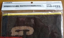 03-zion-towel-cospa