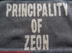 10-zion-towel-cospa
