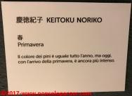 029 Mostra Shodo Torino