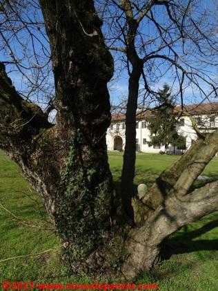 07-abbazia-mirasole