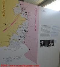 21 Museo Henriquez