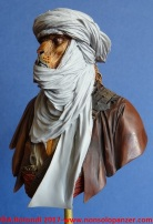 38-lion-tuareg
