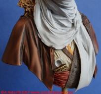 46-lion-tuareg