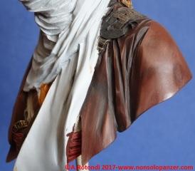 47-lion-tuareg