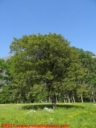 47 Ciclabile Bard-Verres