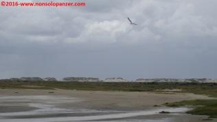 062 Isole Frisone