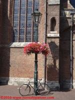 150 Delft