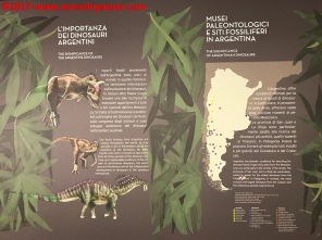 07 Dinosauri Giganti dell'Argentina