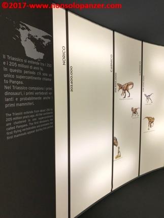 08 Dinosauri Giganti dell'Argentina