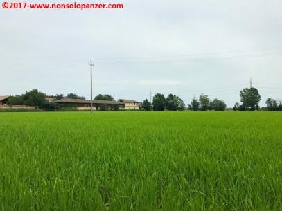 10 Certosa di Pavia