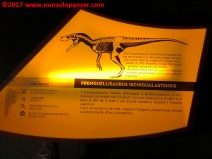14 Dinosauri Giganti dell'Argentina