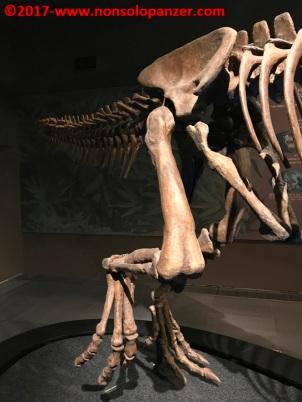 21 Dinosauri Giganti dell'Argentina