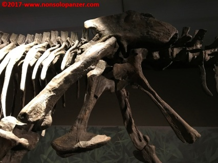28 Dinosauri Giganti dell'Argentina