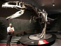 30 Dinosauri Giganti dell'Argentina