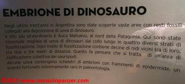 31 Dinosauri Giganti dell'Argentina
