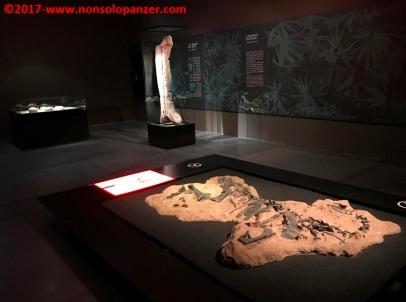 33 Dinosauri Giganti dell'Argentina