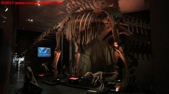 43 Dinosauri Giganti dell'Argentina