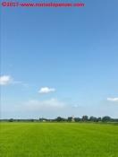 12 Biciclettata Pavia-Milano luglio 2017