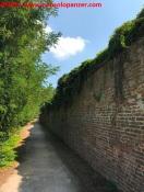 13 Biciclettata Pavia-Milano luglio 2017