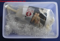 02 Cammy resin kit