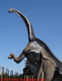02 Dinosauri in Carne e Ossa