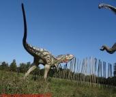 04 Dinosauri in Carne e Ossa