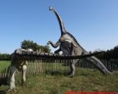05 Dinosauri in Carne e Ossa