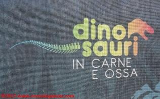 10 Dinosauri in Carne e Ossa